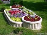 Цветники ярусные - фото 2