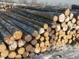 Деревянные опоры - фото 4