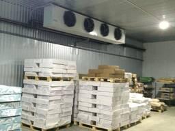 Экспорт товаров из СНГ в Китай