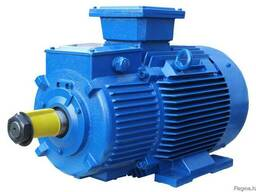 Электродвигатель 4АМН 315 S8 110 кВт 720 об. мин
