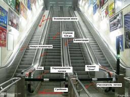 Эскалаторов и траволаторов: - фото 2