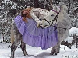 Фотосессии с лошадьми, прокат лошадей, экскурсии