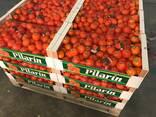 Фрукты и овощи из Испании . Прямые поставки. - фото 4