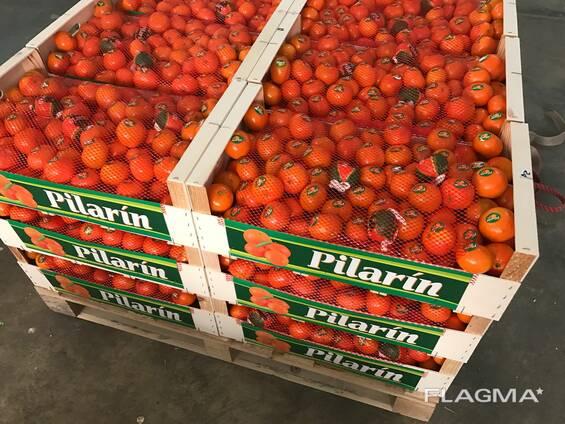 Фрукты и овощи из Испании . Прямые поставки.