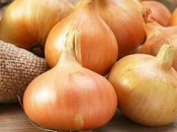 Купим овощи в больших количествах от производителя!