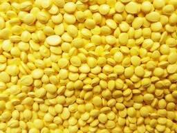 Мастербатч желтый (Polycolor Yellow 04062)