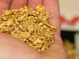 Месторождение россыпи золота