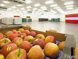 Металлокаркасные фруктохранилища от производителя