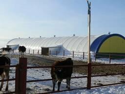 Молочные фермы откормочные базы зерносклады коровники ангары