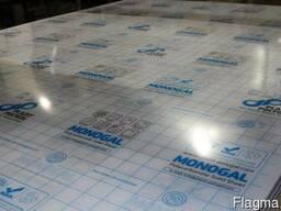 Моногаль (монолитный поликарбонат)