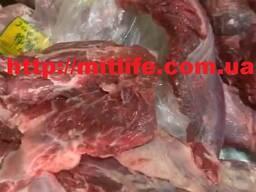 Мясо Говядина без кости Украина fca cif fob daf LLC Mitlife