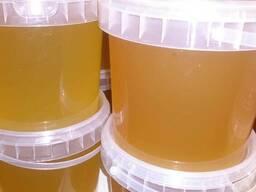 Мёд цветочный - фото 3