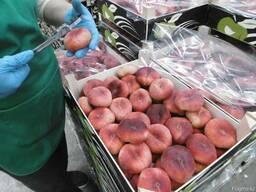Нектарин и персик из Испании.Прямые поставки.