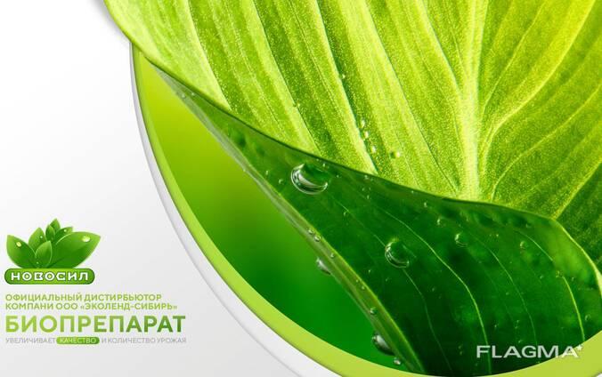Новосил - средство защиты растений, протравитель семян