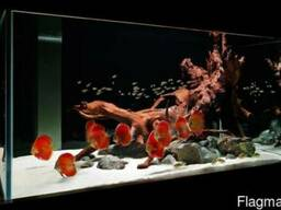 Песок кварцевый для аквариума