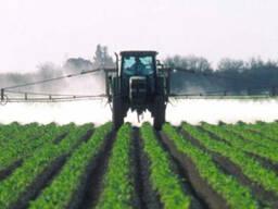 Пестициды - фото 1