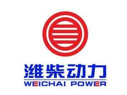 Поршневая группа Weichai