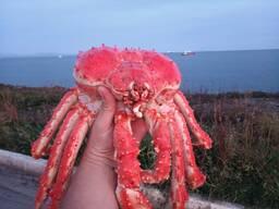 Продам морепродукты с Дальнего Востока напрямую от произв-ля