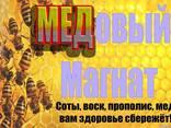Продам мёд оптом длительное сотрудничество - фото 1