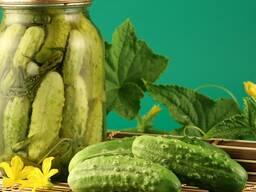 Производство и продажа консервированных овощей, фруктов, яго