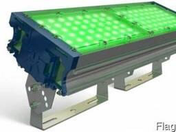 Прожекторное освещение TL-PROM 100 PR PLUS FL Green