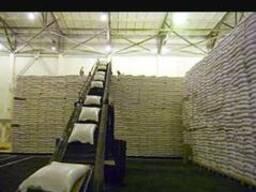 Пшеница 4класс.