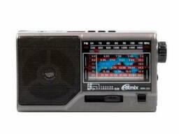 Радиоприемник портативный Ritmix RPR-151
