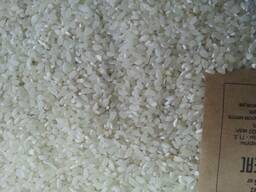 Рис Кубань