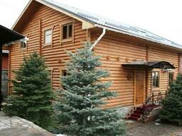 Русская баня из бревна, Срубы, Сауны, финская баня - фото 2