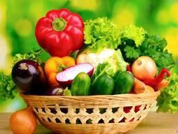 Семена овощей, бахчевых культур