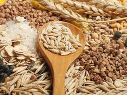 Семена подсолнечника, пшеница