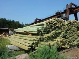 Столбы деревянные (опоры ЛЭП)
