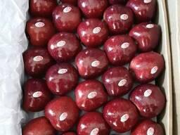Свежие золотые вкусные яблоки фрукты на продажу