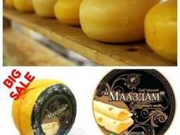 Сыр Мааздам Твердые сыры оптом Украина LLC Mitlife
