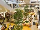 Торгово развлекательный центр - фото 2
