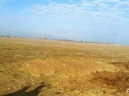 Участок КХ в пригороде Алматы 170 га