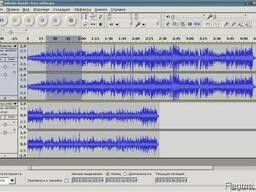 Услуги цифровой аудиозаписи (1 язык перевода, формат MP3)