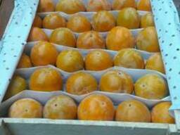 Узбекские фрукты