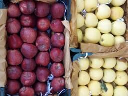 Яблоки из Ирана