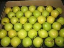 Яблоко голден делишес