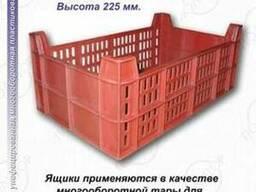 Ящики для фруктов и ягод