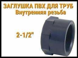 Заглушка резьбовая ПВХ для труб ERA (2-1/2)
