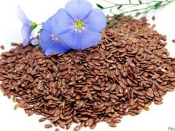 Закупаем семена льна. Лен масличный