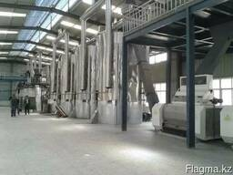 Завод по переработки масличных культур под ключ.