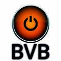 BVB, ТОО